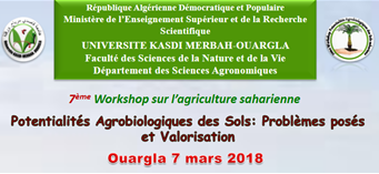 workshop sur agriculture saharienne